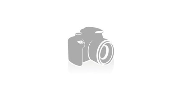 Брянская гильдия риэлторов сертификация агентств недвижимости скачать реферат сертификация менеджмента качества в рб